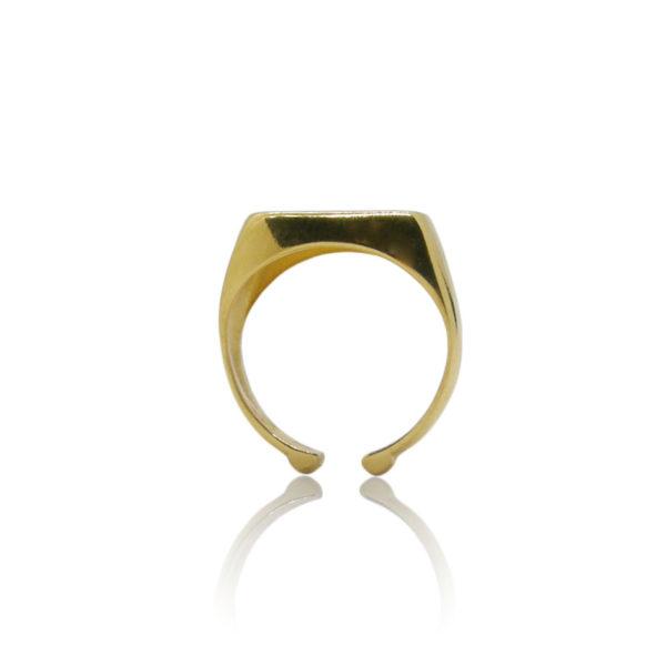 flat ring 2